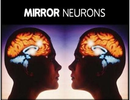 zrcadlové neurony